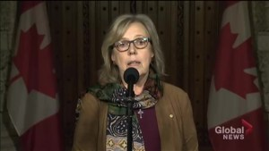 Elizabeth May says party leaders coming together on Francophone in Ontario 'symbolic' but more needed